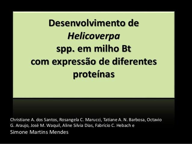 Desenvolvimento de Helicoverpa spp. em milho Bt com expressão de diferentes proteínas Christiane A. dos Santos, Rosangela ...
