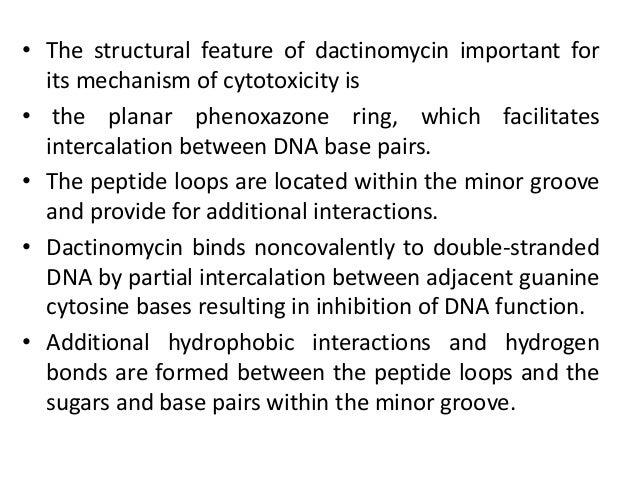 Phenoxazone Ring