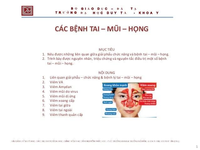 1 CÁC BỆNH TAI – MŨI – HỌNG MỤC TIÊU 1. Nêu được những liên quan giữa giải phẩu chức năng và bệnh tai – mũi – họng. 2. Trì...