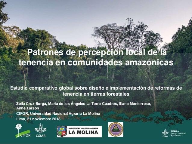 Zoila Cruz Burga, María de los Ángeles La Torre Cuadros, Iliana Monterroso, Anne Larson CIFOR, Universidad Nacional Agrari...