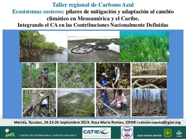 USDA FOREST SERVICE Taller regional de Carbono Azul Ecosistemas costeros: pilares de mitigación y adaptación al cambio cli...