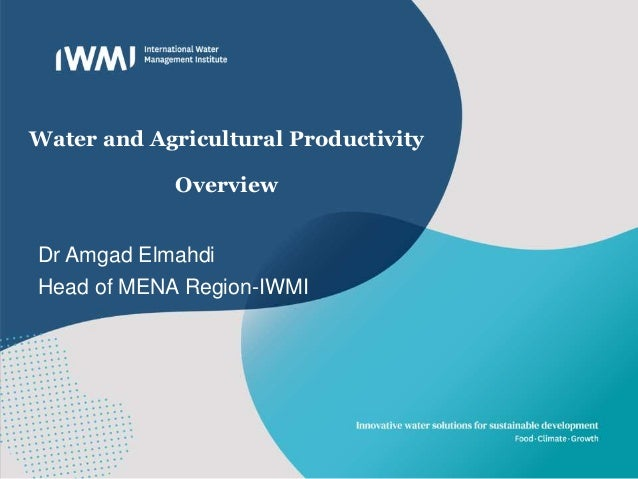 Water and Agricultural Productivity Overview Dr Amgad Elmahdi Head of MENA Region-IWMI