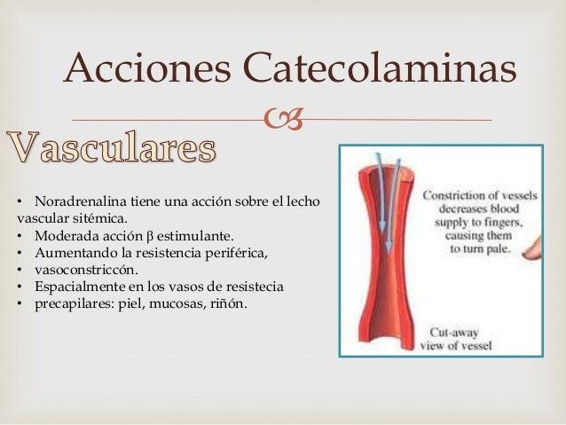 Acciones Catecolaminas                  • La Dopamina estimula receptores Dopaminérgicos, cuando se administra de manerae...