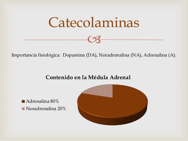 Catecolaminas                      Importancia fisiológica: Dopamina (DA), Noradrenalina (NA), Adrenalina (A).           ...