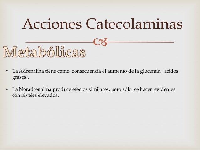 Acciones Catecolaminas                • Estimulación β-adrenérgica en elhepatocito, vía AMPc, promuevela dregdación del g...