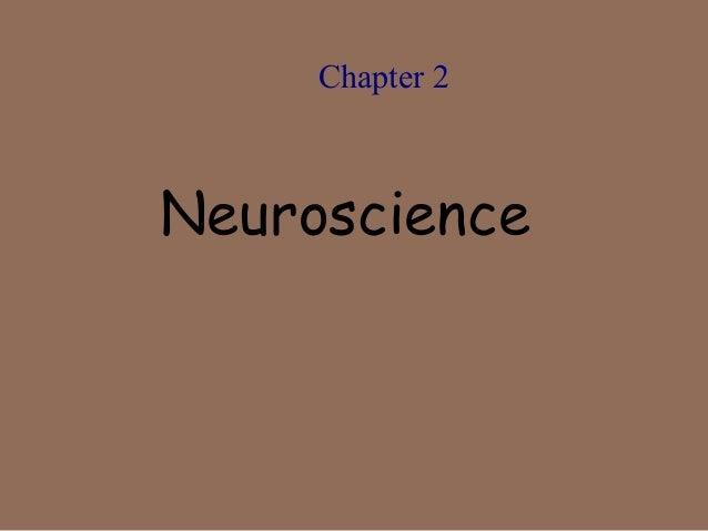Chapter 2  Neuroscience