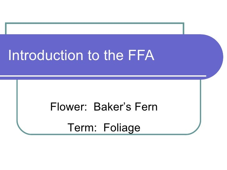 Introduction to the FFA Flower:  Baker's Fern Term:  Foliage