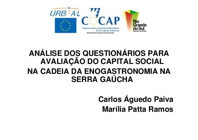 ANÁLISE DOS QUESTIONÁRIOS PARA   AVALIAÇÃO DO CAPITAL SOCIALNA CADEIA DA ENOGASTRONOMIA NA          SERRA GAÚCHA          ...