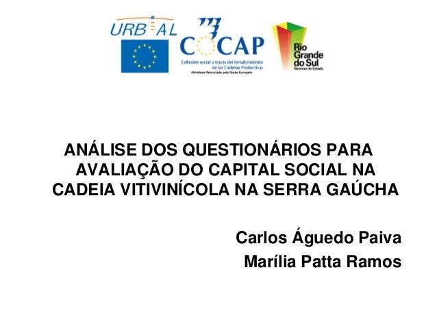 ANÁLISE DOS QUESTIONÁRIOS PARA  AVALIAÇÃO DO CAPITAL SOCIAL NACADEIA VITIVINÍCOLA NA SERRA GAÚCHA                  Carlos ...