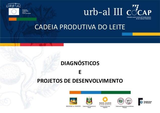 CADEIA PRODUTIVA DO LEITE       DIAGNÓSTICOS              EPROJETOS DE DESENVOLVIMENTO