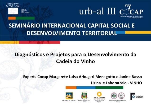 SEMINÁRIO INTERNACIONAL CAPITAL SOCIAL E     DESENVOLVIMENTO TERRITORIAL Diagnósticos e Projetos para o Desenvolvimento da...