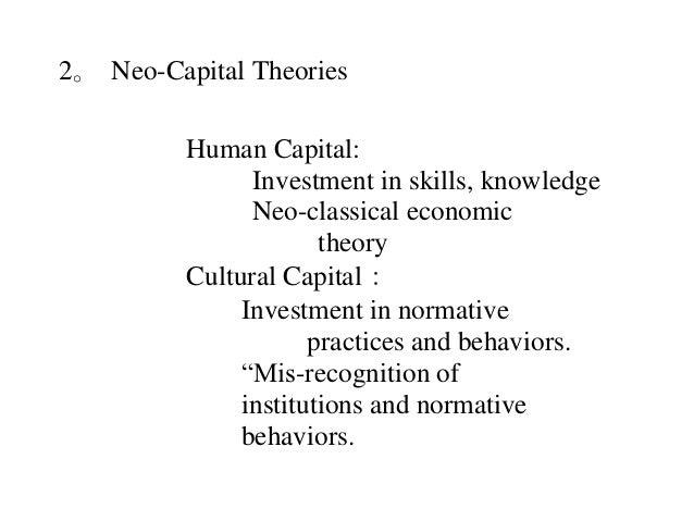 Social Capital Essay