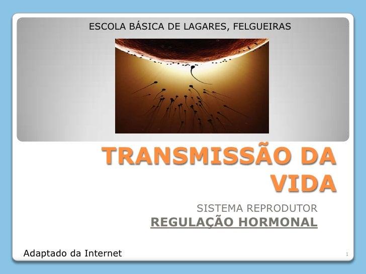 TRANSMISSÃO DA VIDA<br />SISTEMA REPRODUTOR<br />REGULAÇÃO HORMONAL<br />1<br />ESCOLA BÁSICA DE LAGARES, FELGUEIRAS<br />...