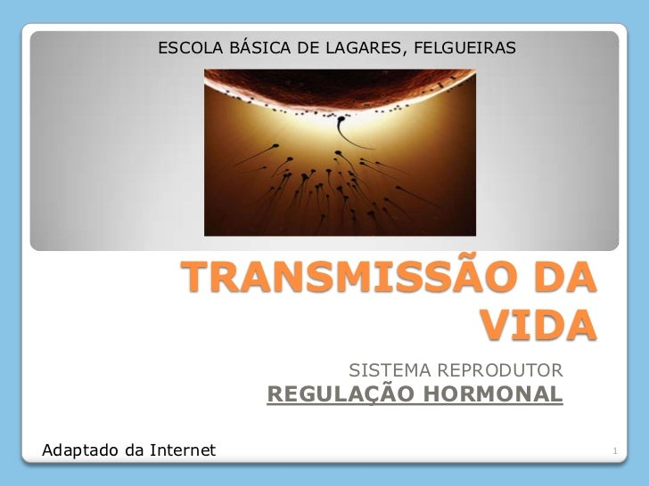 ESCOLA BÁSICA DE LAGARES, FELGUEIRAS               TRANSMISSÃO DA                         VIDA                            ...