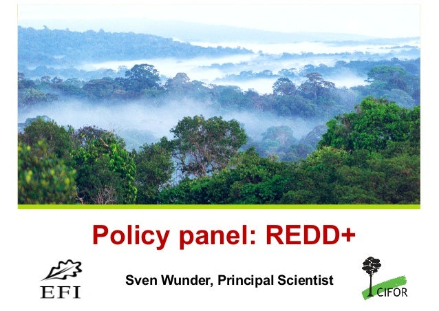 THINKING beyond the canopy Policy panel: REDD+ Sven Wunder, Principal Scientist