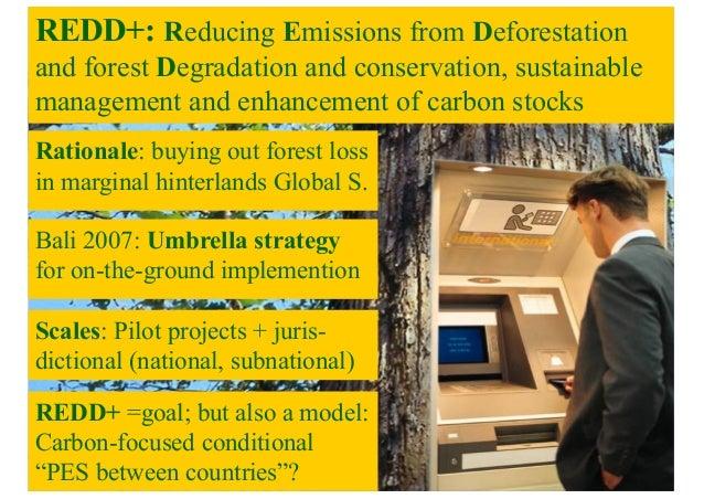 Policy panel: REDD+ Slide 2