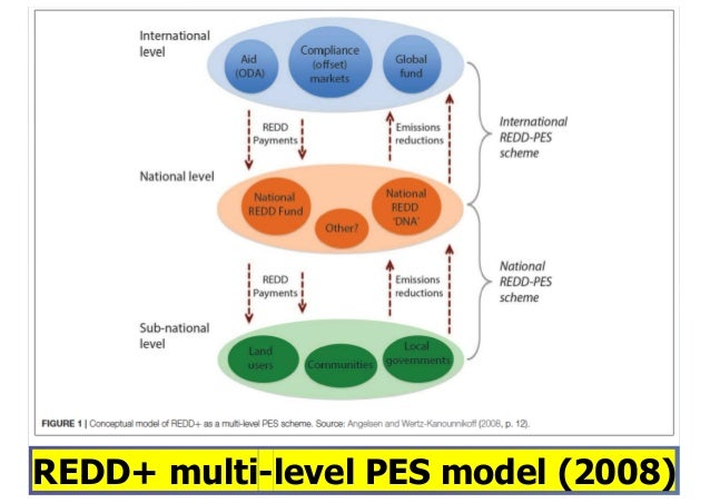 Policy panel: REDD+ Slide 3