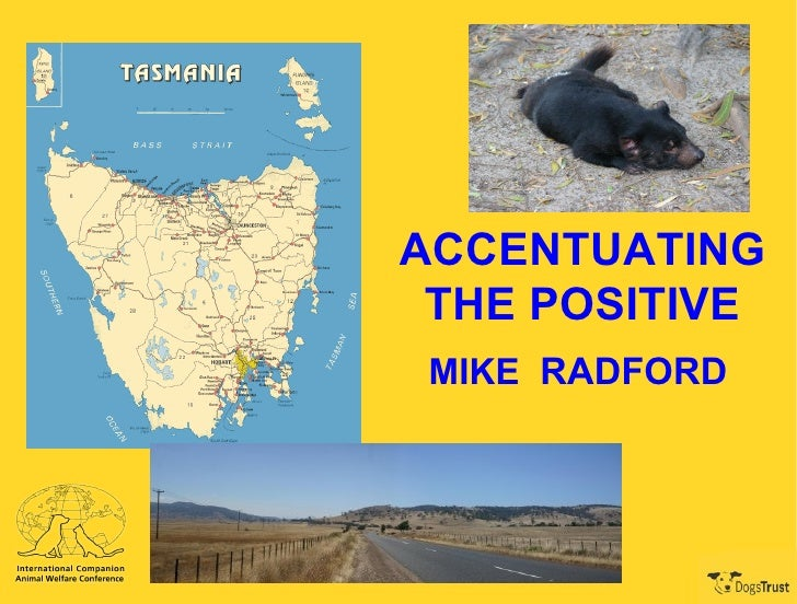 ACCENTUATING THE POSITIVE MIKE  RADFORD