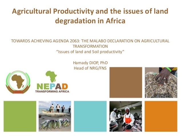 Agricultural Productivity and the issues of land degradation in Africa TOWARDS ACHIEVING AGENDA 2063: THE MALABO DECLARATI...