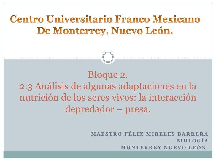 Centro Universitario Franco Mexicano<br />De Monterrey, Nuevo León.<br />Bloque 2.2.3 Análisis de algunas adaptaciones en ...