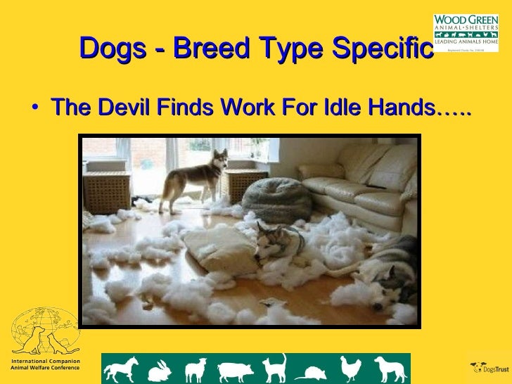 the devil finds work for idle hands Define the devil makes / finds work for idle hands (phrase) and get synonyms what is the devil makes / finds work for idle hands (phrase) the devil makes / finds.