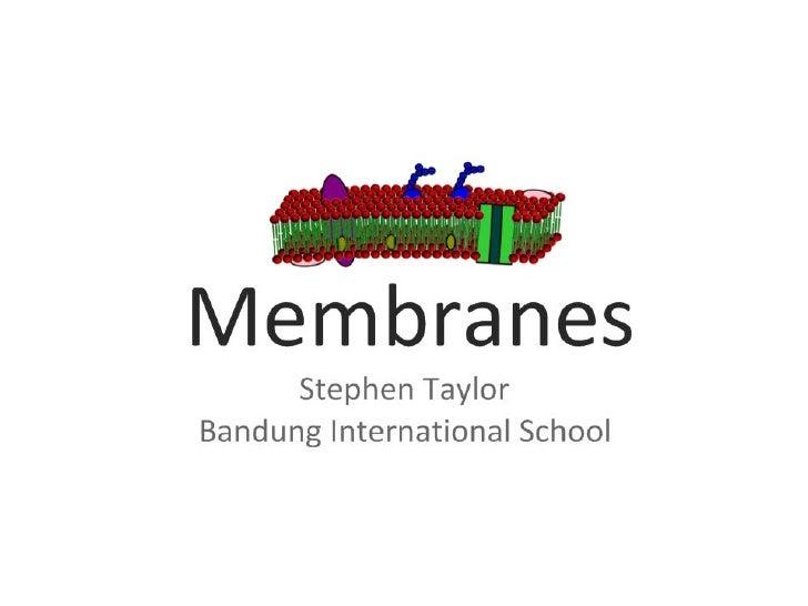 2.4 membranes