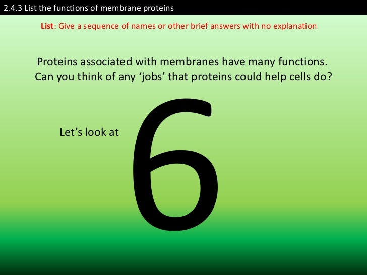 2.4.3 List the functions of membrane proteins         List: Give a sequence of names or other brief answers with no explan...