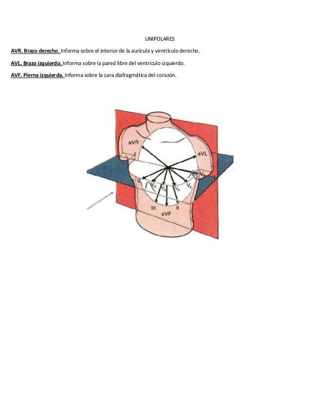 UNIPOLARESAVR. Brazo derecho. Informa sobre el interior de la aurícula y ventrículo derecho.AVL. Brazo izquierdo. Informa ...
