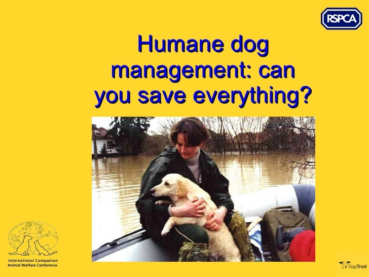 Humane dog management: can you save everything?