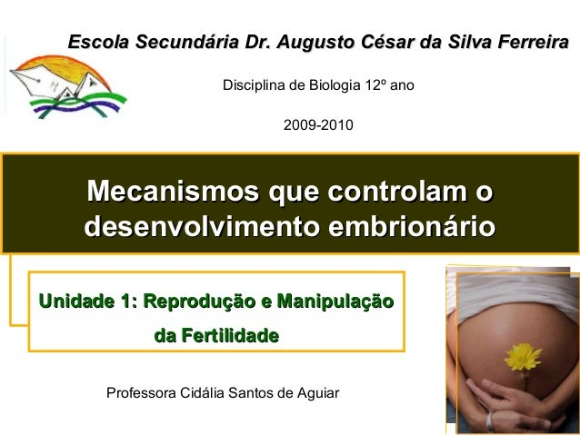 Escola Secundária Dr. Augusto César da Silva FerreiraEscola Secundária Dr. Augusto César da Silva Ferreira Disciplina de B...