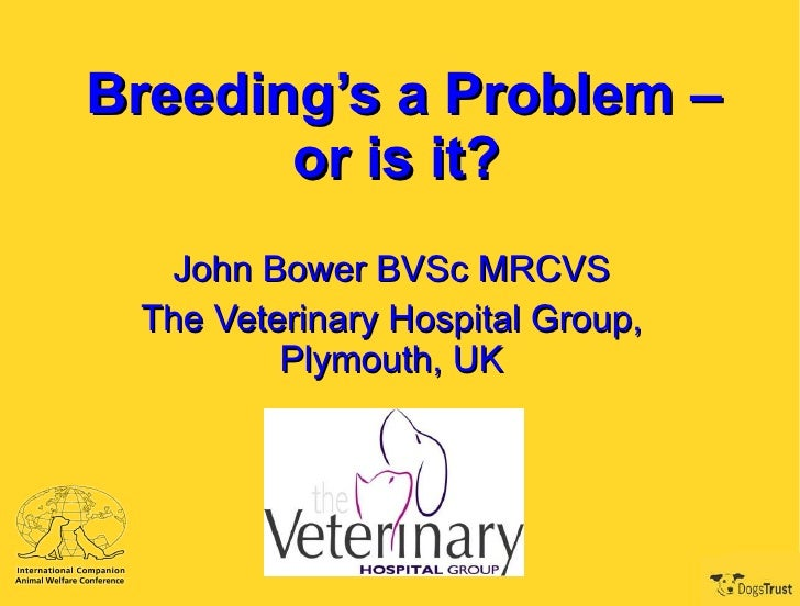 Breeding's a Problem – or is it?   John Bower BVSc MRCVS The Veterinary Hospital Group, Plymouth, UK