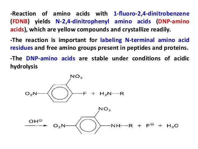 characteristics and properties of amino acids Aliphatic amino acids honorary member of the , meaning that methionine effectively susbsitutes well with the true aliphatic amino acaids back to main page please cite: mj betts, rb russell amino acid properties and consequences of subsitutions in bioinformatics for geneticists.