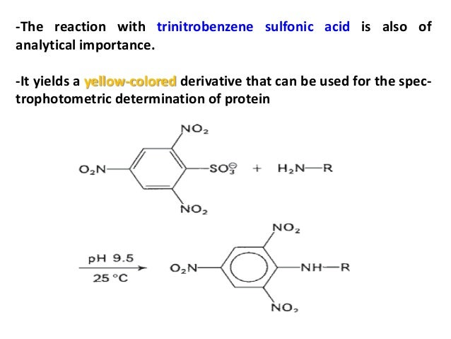 determination of free amino groups in proteins by trinitrobenzenesulfonic acid