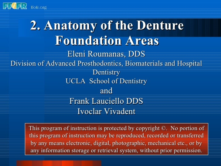 2atomy Of The Denture Foundation Areas