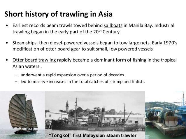 Managing tropical trawl fisheries Development of the APFIC regional …