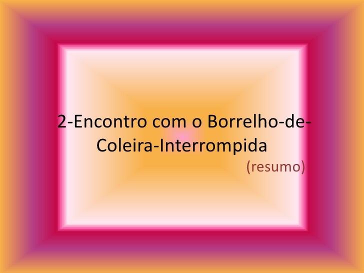 2-Encontro com o Borrelho-de-Coleira-Interrompida<br />(resumo)<br />