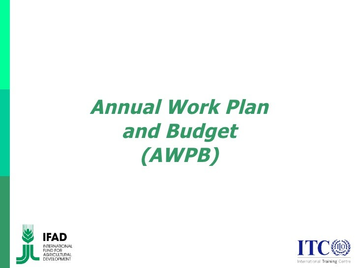 Annual Work Plan and Budget (AWPB)