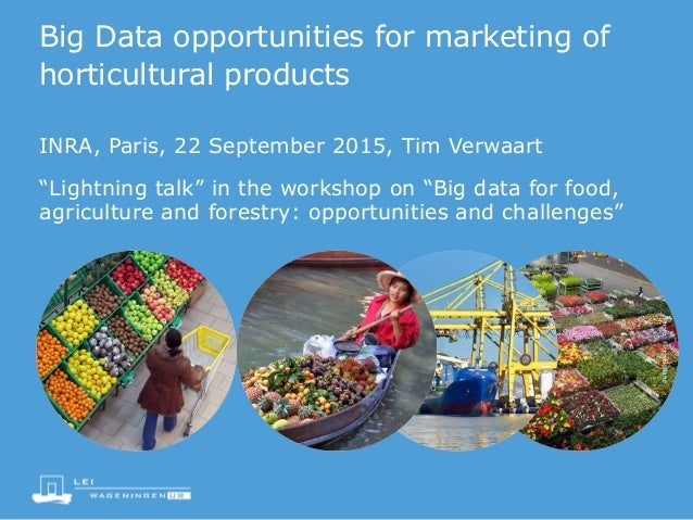 """Big Data opportunities for marketing of horticultural products """"Lightning talk"""" in the workshop on """"Big data for food, agr..."""
