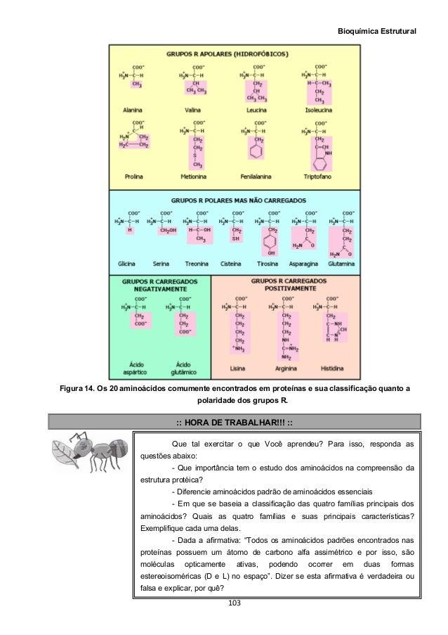 Bioquimica estrutural