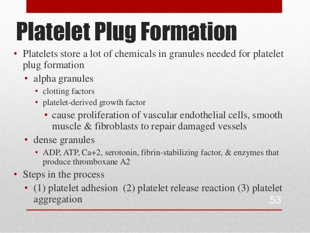 platelet plug formation steps Update on antithrombotic use and mechanism of action   steps leading to thrombus formation and degradation  the transformation from a temporary platelet plug to a permanent fibrin clot is.