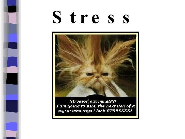 Stress #@*#*