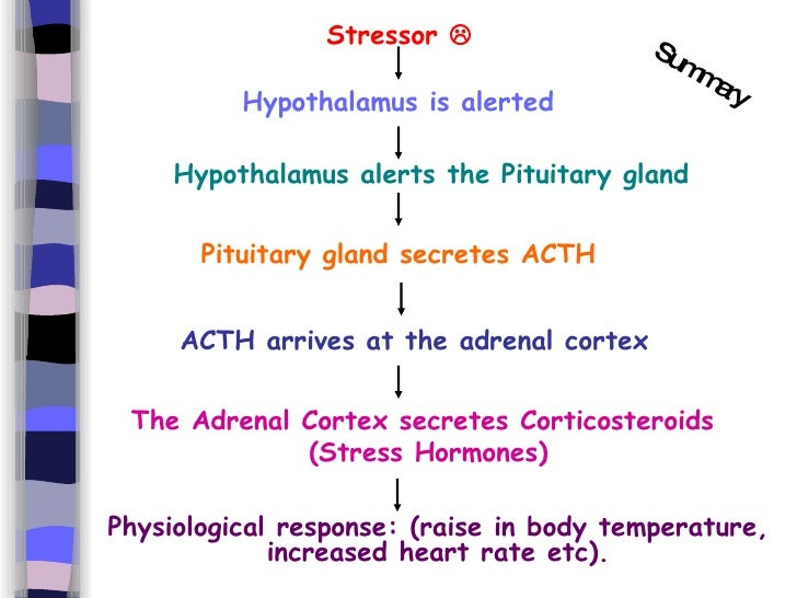 adrenal corticosteroids effects