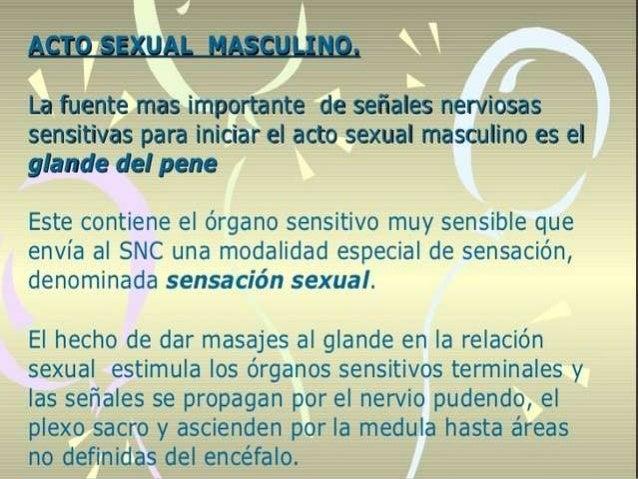 La erección del pene es el primer efecto de la estimulación sexual masculina y el grado de erección es proporcional al gra...