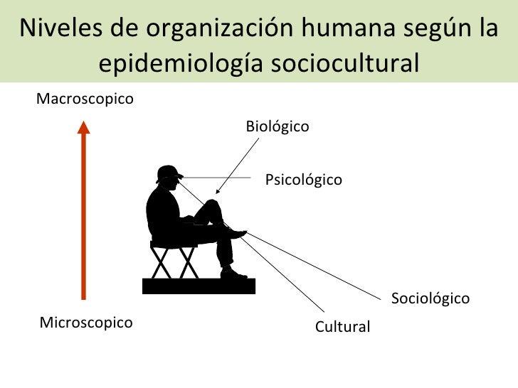 Niveles de organización humana según la epidemiología sociocultural Microscopico Macroscopico Biológico Psicológico Sociol...