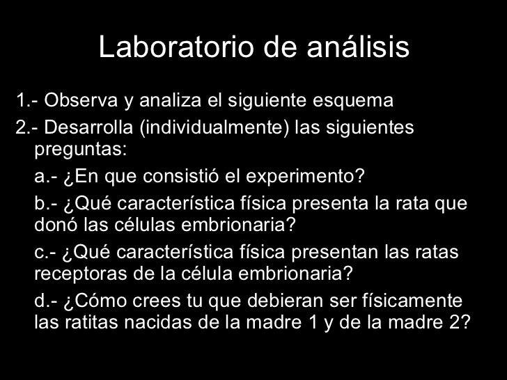 Laboratorio de análisis <ul><li>1.- Observa y analiza el siguiente esquema </li></ul><ul><li>2.- Desarrolla (individualmen...