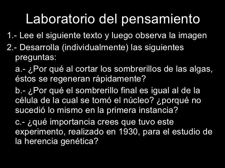 2.  cromosomas, genes, mitosis. Slide 3