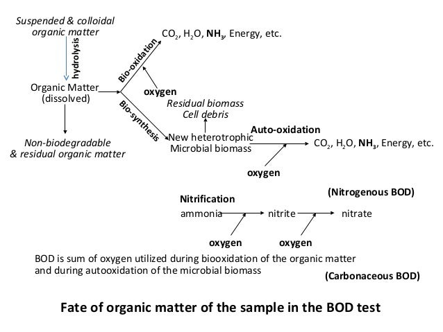 Fate of organic matter of the sample in the BOD test Organic Matter (dissolved) Non-biodegradable & residual organic matte...