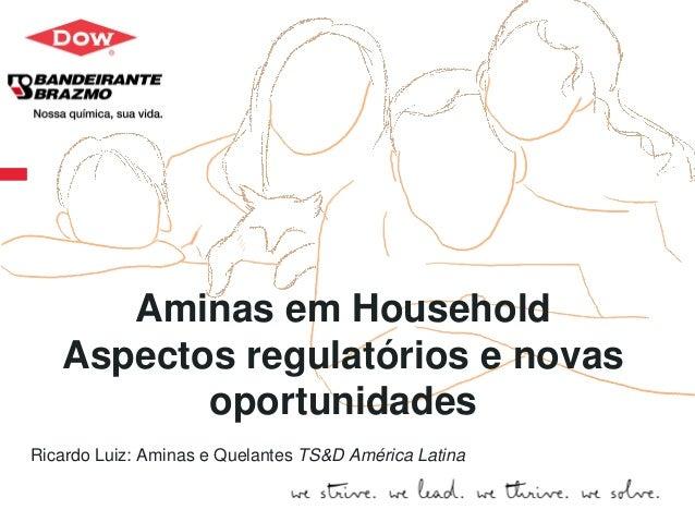 Dow.com  Aminas em Household  Aspectos regulatórios e novas oportunidades  Ricardo Luiz: Aminas e Quelantes TS&D América L...