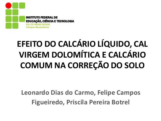 INSTITUTO FEDERAL DE  EDUCAÇÃO, CIÊNCIA E TECNOLOGIA  SUL DE MINAS GERAIS  Câmpus Muzambinho  EFEITO DO CALCÁRIO LÍQUIDO, ...