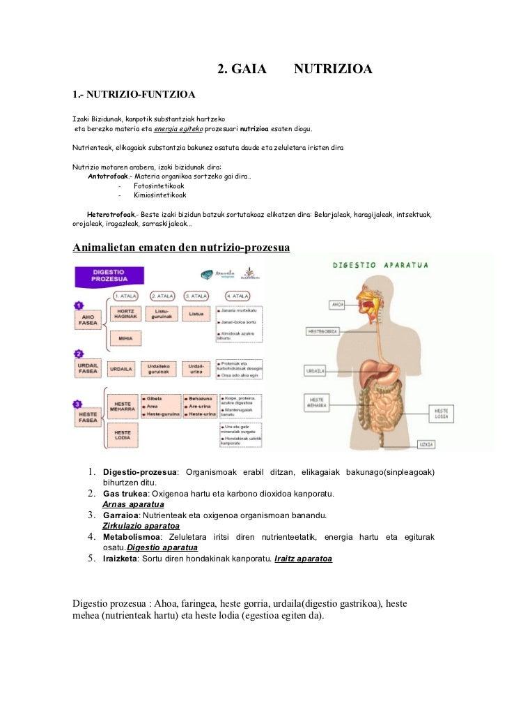 2. GAIA                 NUTRIZIOA1.- NUTRIZIO-FUNTZIOAIzaki Bizidunak, kanpotik substantziak hartzeko eta berezko materia ...
